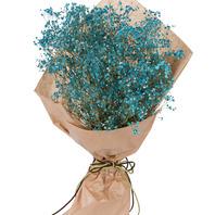 파란안개꽃다발